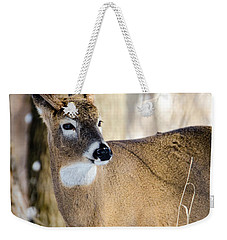 Weekender Tote Bag featuring the photograph Winter Buck by Steven Santamour
