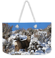 Winter Doe Weekender Tote Bag