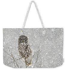 Winter Ghost Weekender Tote Bag by Dee Cresswell