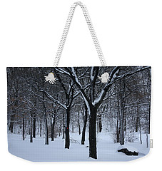 Weekender Tote Bag featuring the photograph Winter In The Park by Dora Sofia Caputo Photographic Art and Design