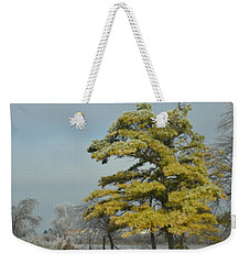 Weekender Tote Bag featuring the photograph Winter Landscape by Debra Martz