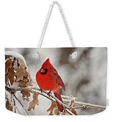 Winter Northern Cardinal Weekender Tote Bag by Lana Trussell