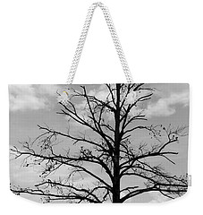 Weekender Tote Bag featuring the photograph Winter Tree by Andrea Anderegg