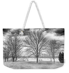 Weekender Tote Bag featuring the photograph Winter Trees by Howard Salmon