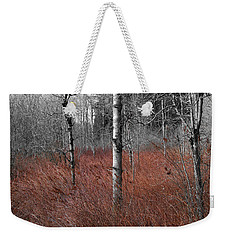 Weekender Tote Bag featuring the photograph Winter Wetland by Jani Freimann