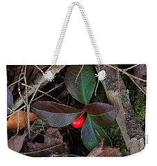 Wintergreen Weekender Tote Bag by Mim White