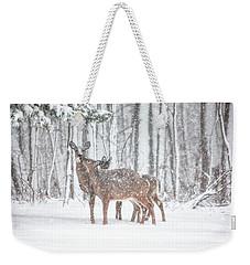 Winters Love Weekender Tote Bag