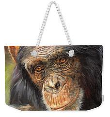 Wise Eyes Weekender Tote Bag by David Stribbling
