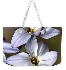 Weekender Tote Bag featuring the photograph With Company by Joy Watson