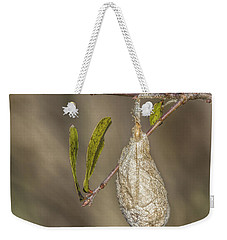 Wonder What's Inside Weekender Tote Bag by Jane Luxton