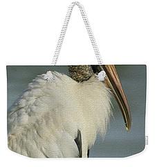 Wood Stork In Oil Weekender Tote Bag by Deborah Benoit