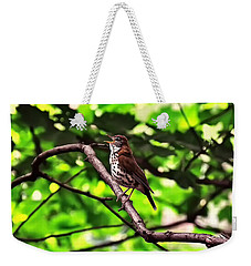 Wood Thrush Singing Weekender Tote Bag