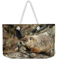 Woodchuck Weekender Tote Bag by James Peterson