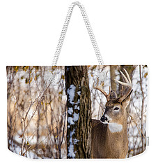 Weekender Tote Bag featuring the photograph Woodland Outlaw by Steven Santamour