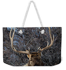 Weekender Tote Bag featuring the photograph Wyoming Elk by Michael Chatt