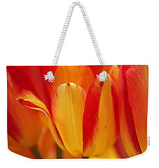 Yellow And Red Striped Tulips Weekender Tote Bag by Rona Black