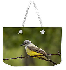 Yellow-bellied Fence-sitter Weekender Tote Bag