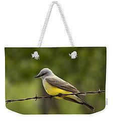 Yellow-bellied Fence-sitter Weekender Tote Bag
