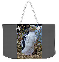 Endangered Yellow Eyed Penguin Hoiho Weekender Tote Bag by Venetia Featherstone-Witty