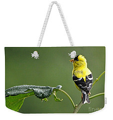 Weekender Tote Bag featuring the photograph Yellow Finch by Nava Thompson