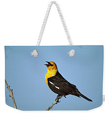 Yellow-headed Blackbird Singing Weekender Tote Bag by Tom Vezo