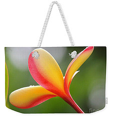 Weekender Tote Bag featuring the photograph Yellow Pink Plumeria by Kristine Merc