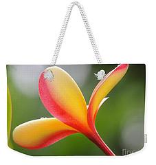 Yellow Pink Plumeria Weekender Tote Bag