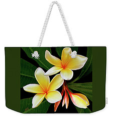 Weekender Tote Bag featuring the photograph Yellow Plumeria by Ben and Raisa Gertsberg