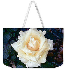 Weekender Tote Bag featuring the photograph Yellow Rose At Dawn by Alys Caviness-Gober
