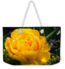 Weekender Tote Bag featuring the photograph Yellow Rose by Dee Dee  Whittle