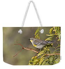 Yellow Rumped Warbler Weekender Tote Bag by Bryan Keil