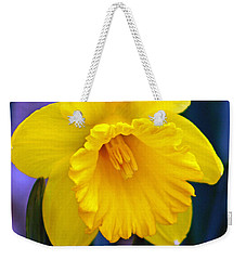 Weekender Tote Bag featuring the photograph Yellow Spring Daffodil by Kay Novy