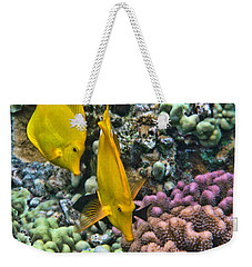 Yellow Tang Pair Weekender Tote Bag by Peggy Hughes