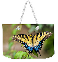 Yellow Tiger Swallowtail Weekender Tote Bag