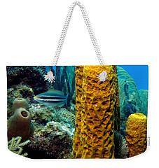 Yellow Tube Sponge Weekender Tote Bag by Amy McDaniel
