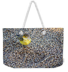 Yellow Warbler On The Beach Weekender Tote Bag