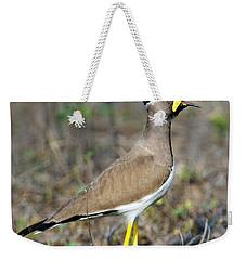 Yellow-wattled Lapwing Vanellus Weekender Tote Bag