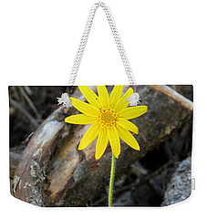 Weekender Tote Bag featuring the photograph Yellow Wildflower by Laurel Powell