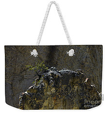 Weekender Tote Bag featuring the photograph Yellowstone  #4144 by J L Woody Wooden