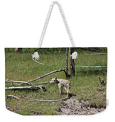 Yellowstone Coyote Weekender Tote Bag