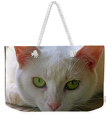 Weekender Tote Bag featuring the photograph You Lookin At Me by Sherman Perry