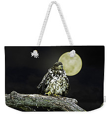 Weekender Tote Bag featuring the photograph Young Bald Eagle By Moon Light by John Haldane