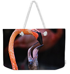 Young Flamingo Feeding Weekender Tote Bag