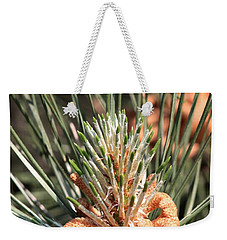 Weekender Tote Bag featuring the photograph Young Pine Cone  by Ramabhadran Thirupattur