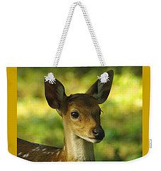 Weekender Tote Bag featuring the photograph Young Spotted Deer by Jacqi Elmslie
