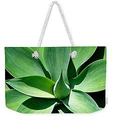 Yucca Sun Weekender Tote Bag
