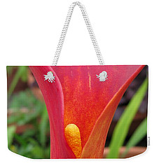 Weekender Tote Bag featuring the photograph Zantedeschia Named Red Sox by J McCombie