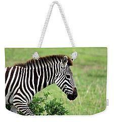 Zebra Weekender Tote Bag by Aidan Moran