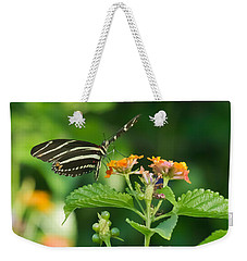 Weekender Tote Bag featuring the photograph Zebra Longwing by Jane Luxton