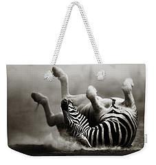 Zebra Rolling Weekender Tote Bag by Johan Swanepoel